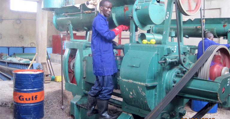 Tinytech - Oil Press Machine