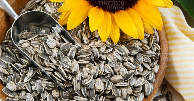Tinytech - Sunflower Cracker Machine